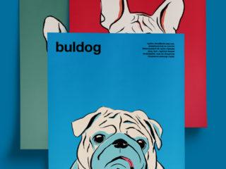 Animals: Bulldog